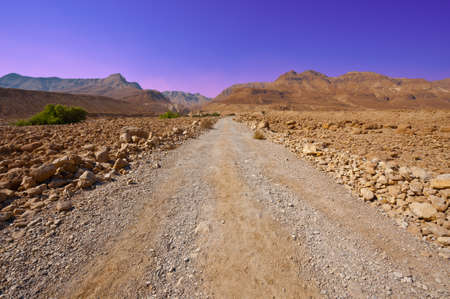 Dirt Road in Sand Hills of Samaria, Israel. Sunset photo