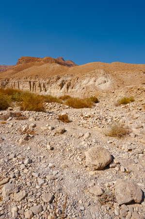 sapless: Asciugare Riverbed nel deserto della Giudea