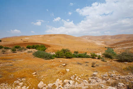 Big Stones in Sand Hills of Samaria, Israel Stock Photo - 16858039