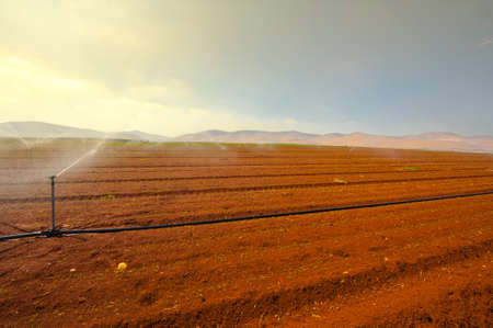 Sprinkler Irrigation on a Plowed Field in Israel Stock Photo - 16857284