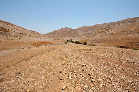 Big Stones in Sand Hills of Samaria, Israel Stock Photo - 16857599