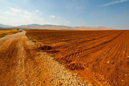 Dirt Road between Plowed Fields in Israel, Spring Stock Photo - 16990577