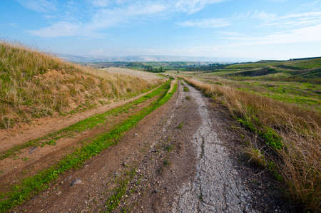 Old Asphalt Road between Withered Grass   Stock Photo - 16990575