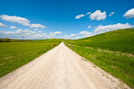 Dirt Road Leading To the Farmers House in Tuscany photo