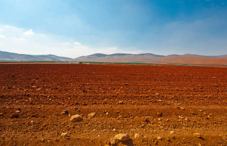Poor Stony Soil after the Harvest in Israel Stock Photo - 17220680