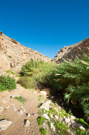 Riverbed in the Judean Mountain, Israel Stock Photo - 17220685