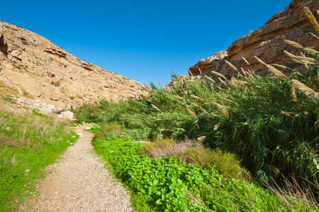 judean:  Riverbed in the Judean Mountain, Israel