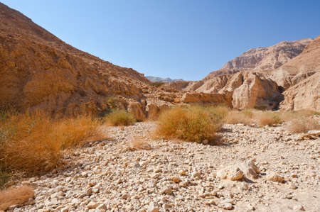 Dry Riverbed in the Judean Desert Stock Photo - 17220684