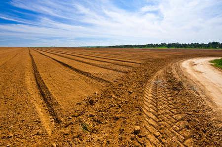 israel agriculture: Dirt Road between Plowed Fields in Israel Stock Photo