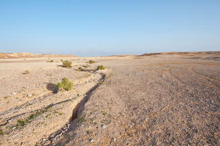 riverbed: Judean Desert on the West Bank of the Jordan River