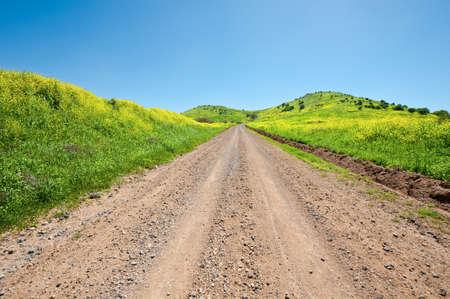 golan: Dirt Road on the Golan Heights, Israel