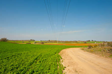 israel agriculture: High-voltage Power Line Passes through the  Fields in Israel