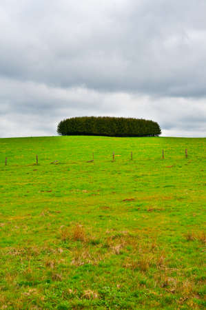 Green Landscape of the Ardennes, Belgium photo