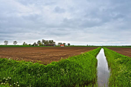 Agriculture on Land Reclaimed from the See, Netherlands