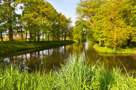 greenwood: Greenwood on the Canal Bank in the Netherlands