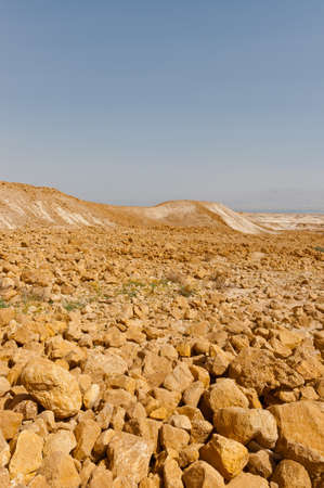 nature reserves of israel: Stone Desert on the West Bank of the Jordan River