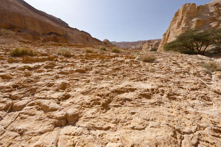 judean hills: Canyon in the Judean Desert on the West Bank  Stock Photo