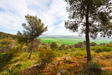 the golan heights: View of the Snowy Peaks of Hermonon the  Golan Heights