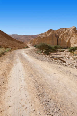 Dirt Road of the Canyon in the Judean Desert