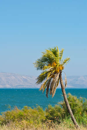 nature reserves of israel: View from Galilee Mountains to Galilee Sea, Kinneret Stock Photo