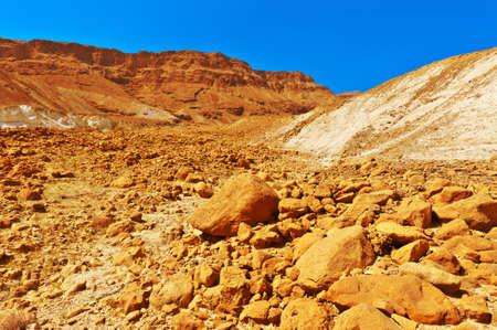 judean: Canyon in the Stony Judean Desert