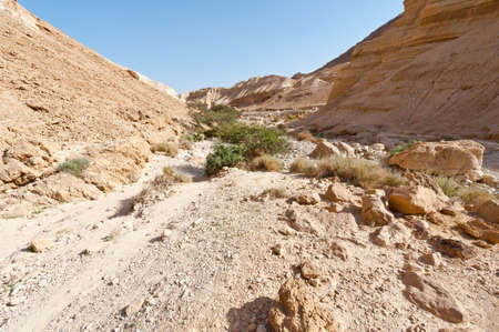 riverbed: Dry Riverbed in the Judean Desert Stock Photo