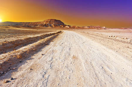 judean hills: Dirt Road in the Judean Desert, Sunset