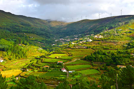Vineyards and Wind Turbines  on the Hills of Portugal Stock Photo