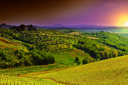 Hill of Tuscany with Vineyard in the Chianti Region, Sunrise photo