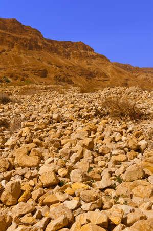 vadi: Stony Desert on the West Bank of the Jordan River