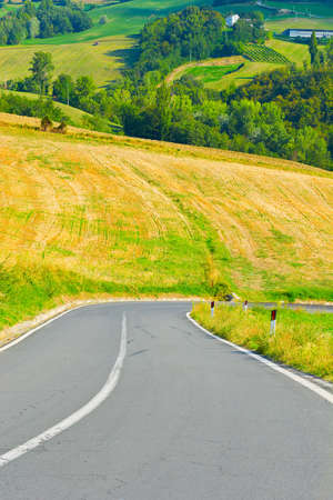 Winding Paved Road in the Tuscany, Italy photo