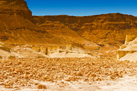 Canyon in the Judean Desert on the West Bank  photo