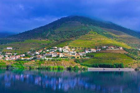 Viñedos en el valle del río Douro, Portugal Foto de archivo