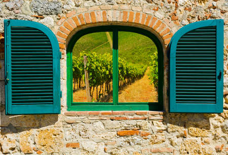 resplendence: Surreal View of Vineyard through the Window