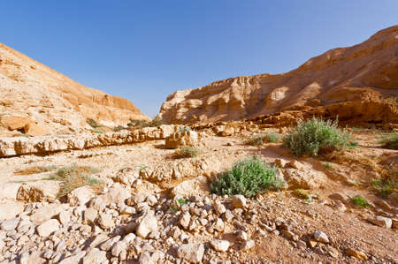 Desert on the West Bank of the Jordan River photo