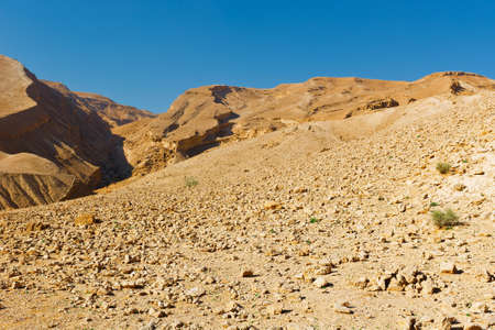 dirt road: Rocky Hills of the Negev Desert in Israel