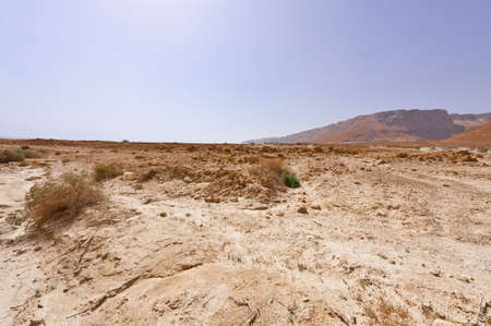 judean hills: Desert on the West Bank of the Jordan River
