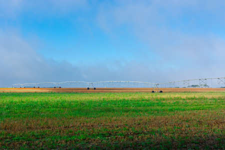 Sprinkler Irrigation on a Field in Portugal photo