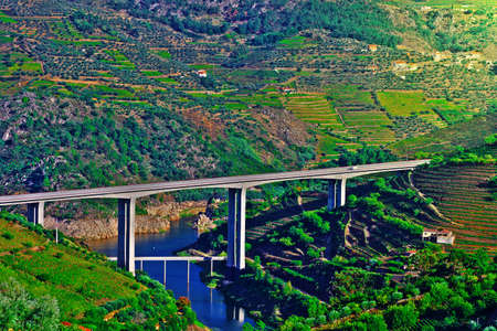 Vineyards in the Valley of the River Douro, Portugal photo