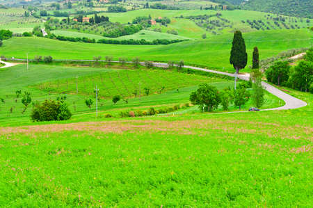 Winding Paved Road between  Fields in the Tuscany photo