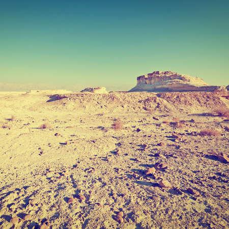 judean: Canyon in the Judean Desert