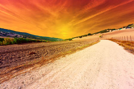 Dirt Road and Plowed Field in Spain, Sunset photo