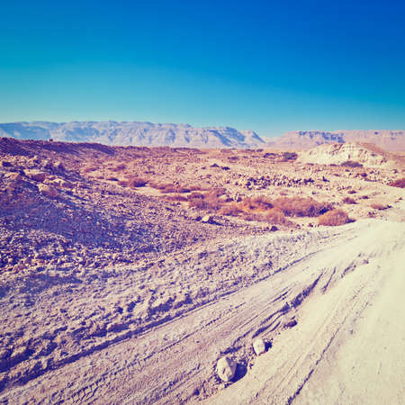 sapless: Strada di sabbia nel deserto della Giudea