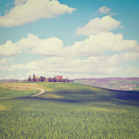 Farmhouse and Green Sloping Meadows of Tuscany, Instagram Effect