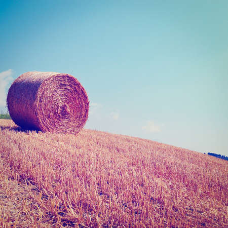 Tuscany Landscape with Hay Bales, Retro Effect photo
