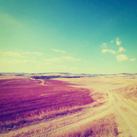Tuscan Landscape with  Rural Roads, Retro Effect photo
