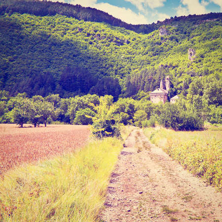 Wheat Field in the French Alps, Retro Effect photo
