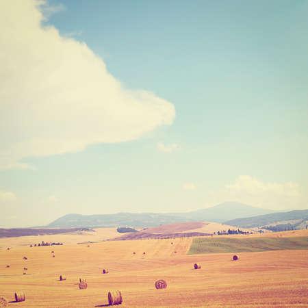 Tuscany Landscape with Many Hay Bales, Retro Effect photo