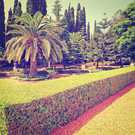 Beautiful Tranquil Bahai Park Garden in Israel, Retro Effect photo