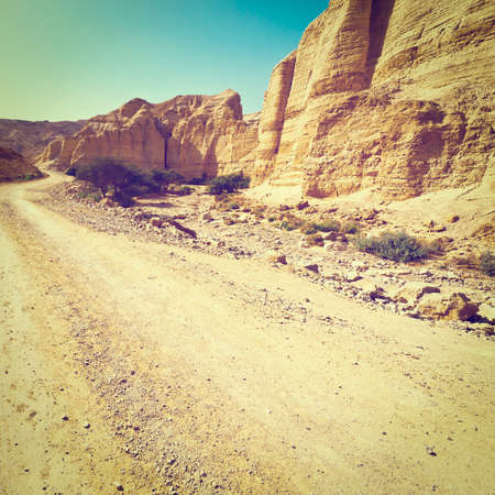 nature reserves of israel: Dirt Road in the Judean Desert in Israel Stock Photo